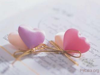 love4556