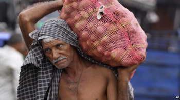 Clips : Bao khoai tây