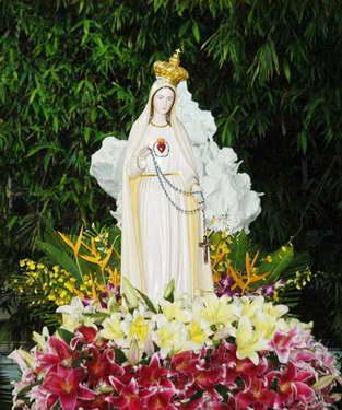 Bước đi trong ánh sáng và tình yêu Mẹ Fatima