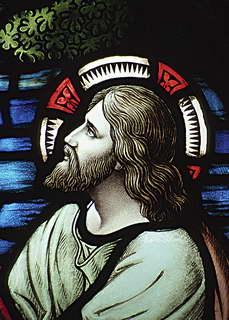Video giảng lễ Chúa nhật 08 năm A (2014)