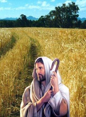 Nghe giảng Chúa nhật 29 năm B (2009 - 2021)