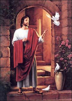 Video giảng lễ Chúa nhật 22 năm C