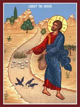 Nghe giảng Chúa nhật 15 năm A (2011 - 2020)