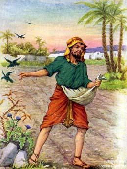 Nghe giảng Chúa nhật 14 năm C (2010 - 2019)