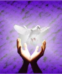 Lễ Hiện Xuống : Thánh Thần nguồn ơn hiệp nhất…