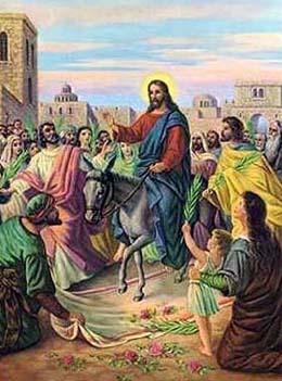 Lễ Lá C: Vạn tuế Đấng ngự đến nhân danh Chúa
