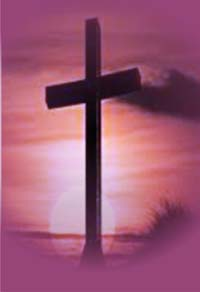 Lễ Lá C: Đường thánh giá… đường vào tình yêu