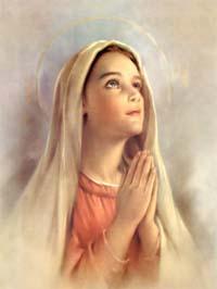 Nghe giảng lễ Đức Mẹ Vô Nhiễm (2011 - 2020)