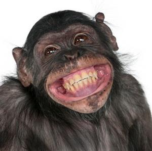 monkeysmile